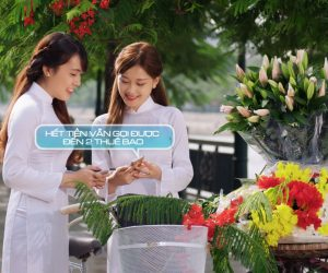 TVC Quảng cáo – Mobifone – Sim hoa phượng