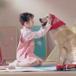 Cùng Vemedim – Chăm sóc thú cưng của bạn mỗi ngày